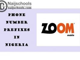 Complete List of All the ZOOMmobile Phone Number (Telephone) Prefixes in Nigeria 2021